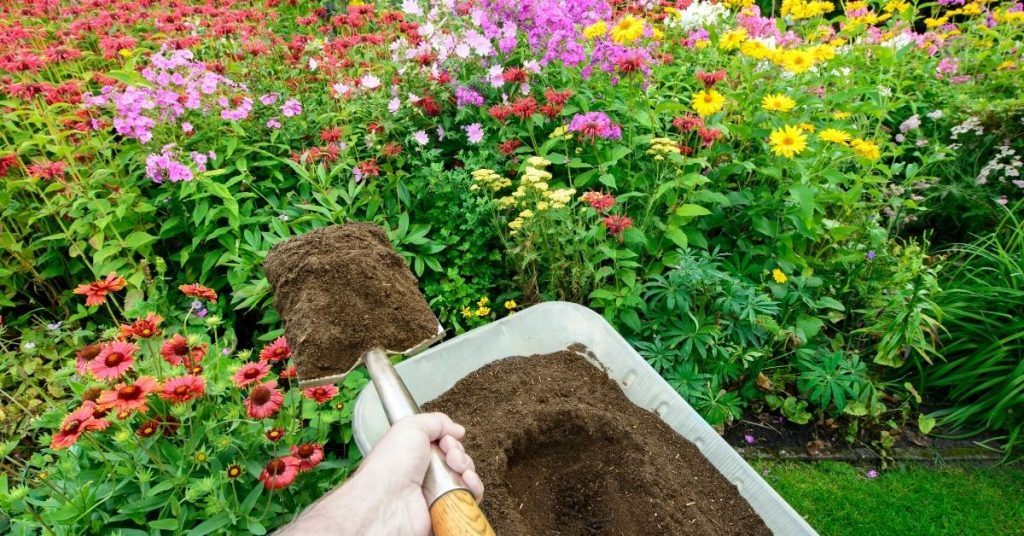 Amend your soil with compost from your own household