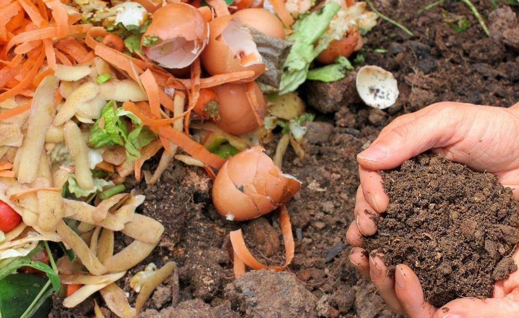 Turn kitchen waste into fertile soil