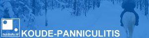 koude-panniculitis