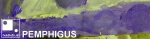 pemphigus pemfigus