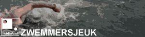 zwemmersjeuk swimmer's itch
