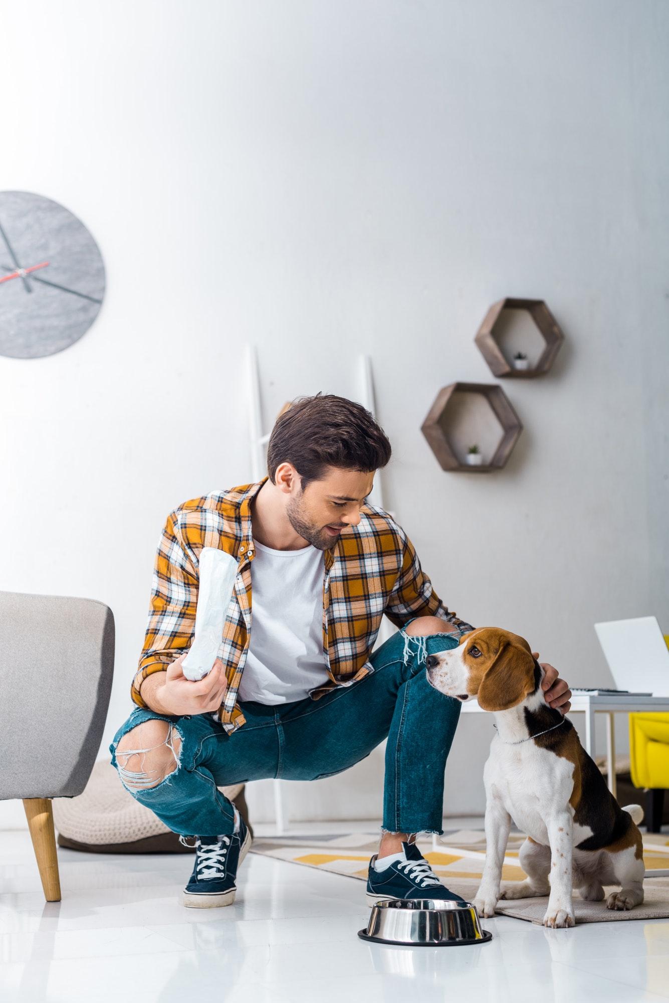 Hundetræning Valby og hvalpetræning Valby - privat & i hold
