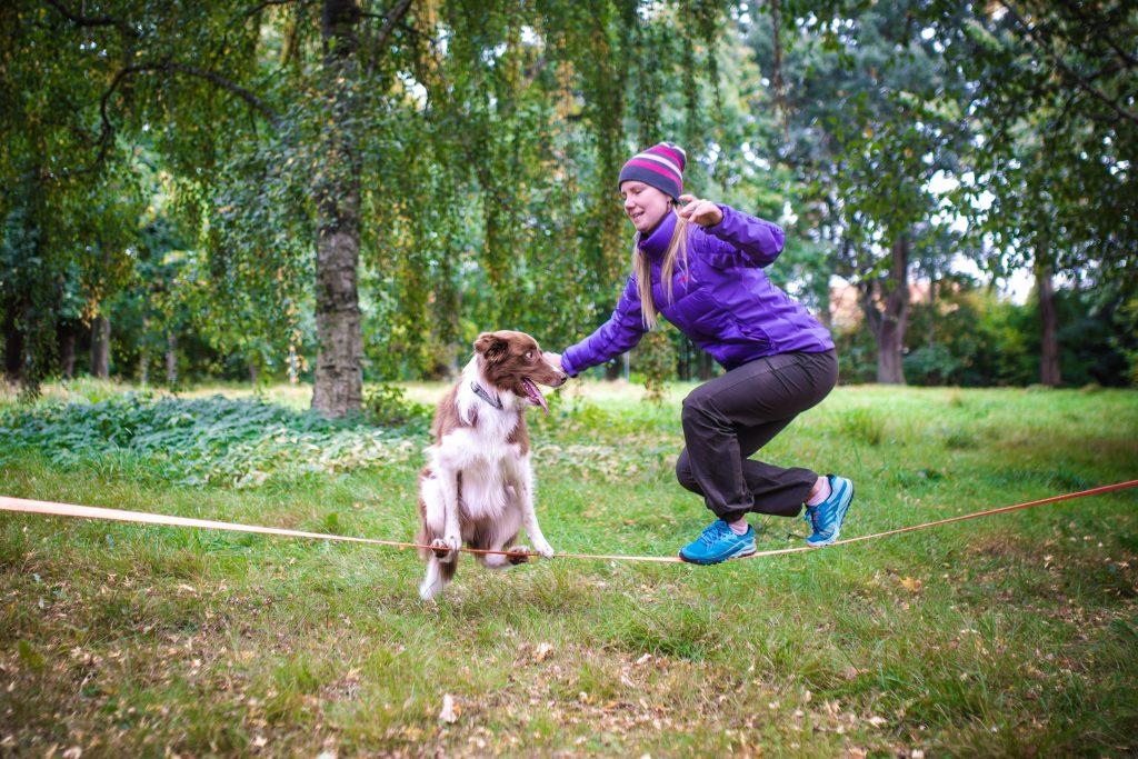 Hund och människa som balanserar på slackline, lek med hunden kan se väldigt olika ut