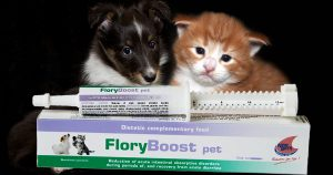 Flory Boost