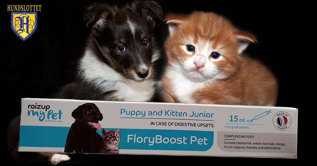 Floryboost Raizup my pet Hundslottet