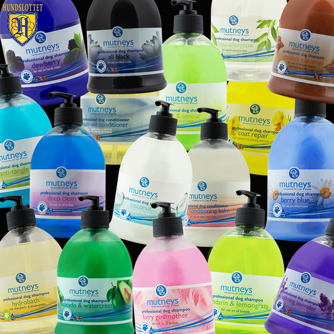 Mutneys shampoo