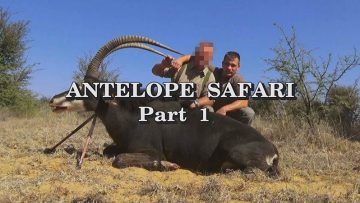 Antelope-Safari—Part-1