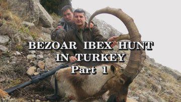 Bezoar-Ibex-Hunt-in-Turkey Part-1a