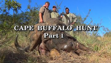 Cape-Buffalo-Hunt—Part-1