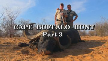 Cape-Buffalo-Hunt—Part-3