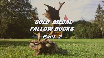 Gold-Medal-Fallow-Bucks—Part-2