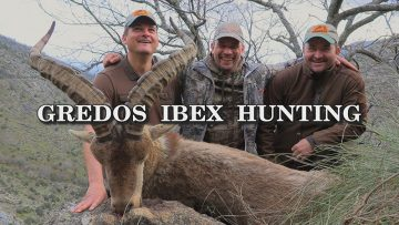 Gredos-ibex-hunting