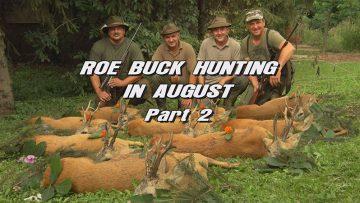 Roebuck-Hunting-in-August—Part-2