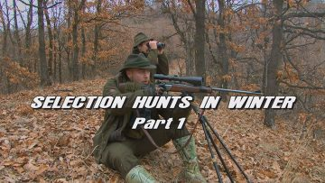 Selection-Hunts-in-Winter—Part-1