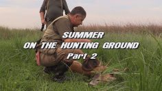 Summer-on-the-Hunting-Ground—Part-2