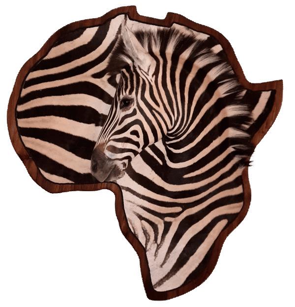 Zebra montering