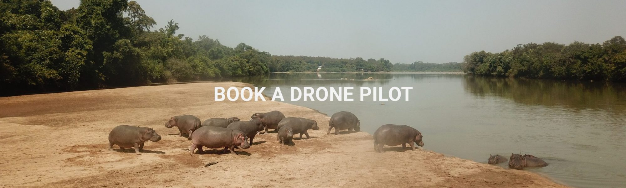 Book a drone pilot