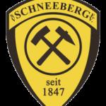 SG Zschorlau/Schneeberg vs. HV Chemnitz