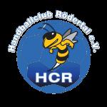 SG Rödertal/Radeberg vs. HV Chemnitz