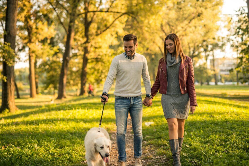 Hvor ofte skal en hund luftes?
