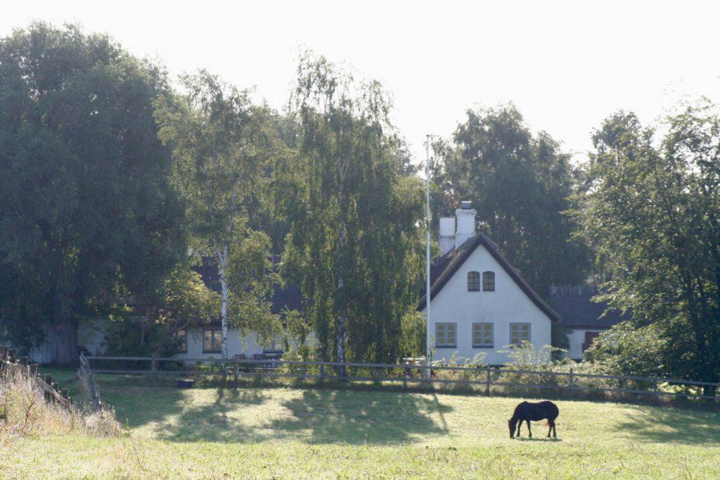 Engholm Vemming Hvirvelvinden gård