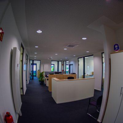 Ibishi Bau GmbH & Co. KG