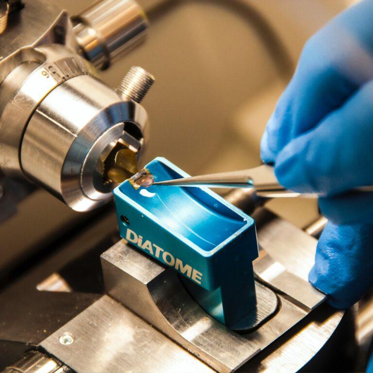 Biomedical Imaging Unit