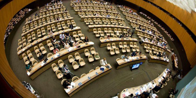 FNs menneskerettighetsråd har vedtatt å granske Israel.