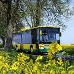 Bus der VLP
