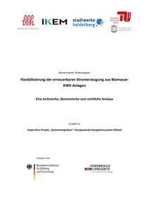 Cover Flexibilisierung der erneuerbaren Stromerzeugung aus Biomasse-KWK-Anlagen – eine technische