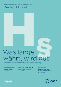Cover Regulierung von Wasserstoff(netzen) – Was zählt