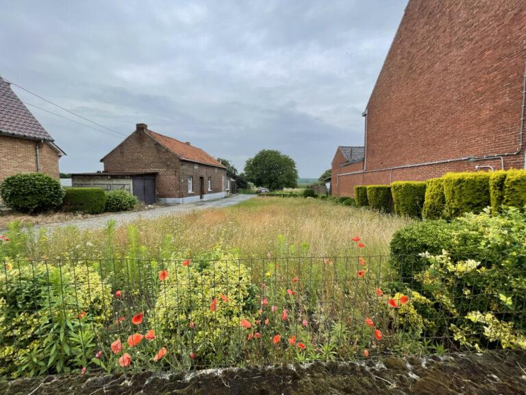 Huis met grond te koop Zoutleeuw