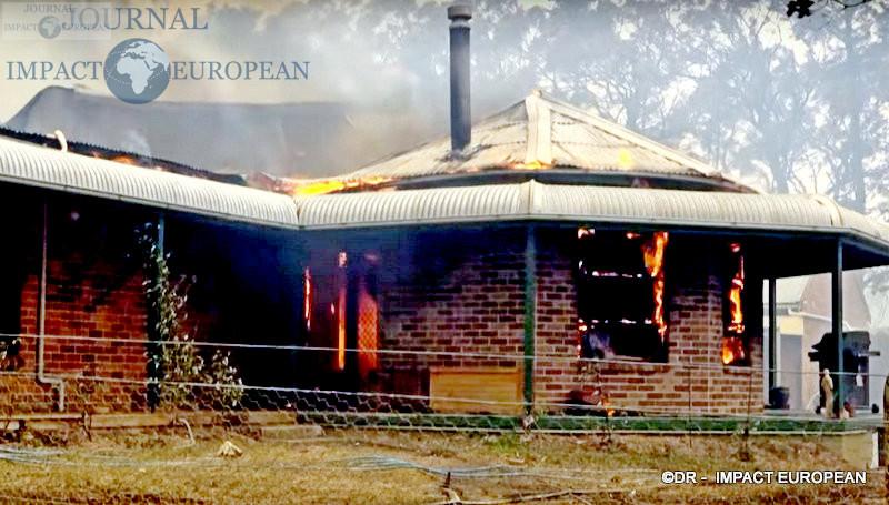 7La faune et la flore de l'Australie dévastées par les incendies