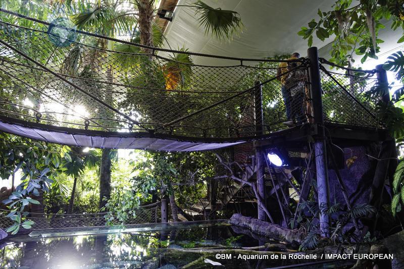 aquarium la rochelle 71