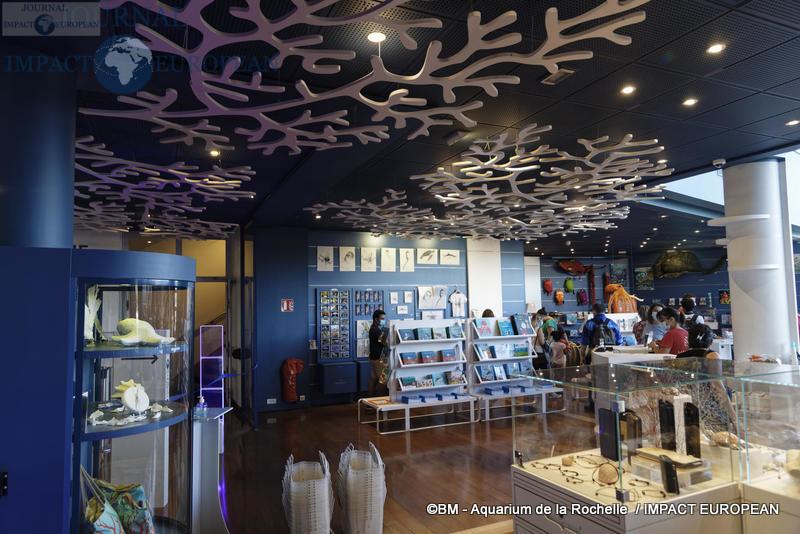 aquarium la rochelle 72