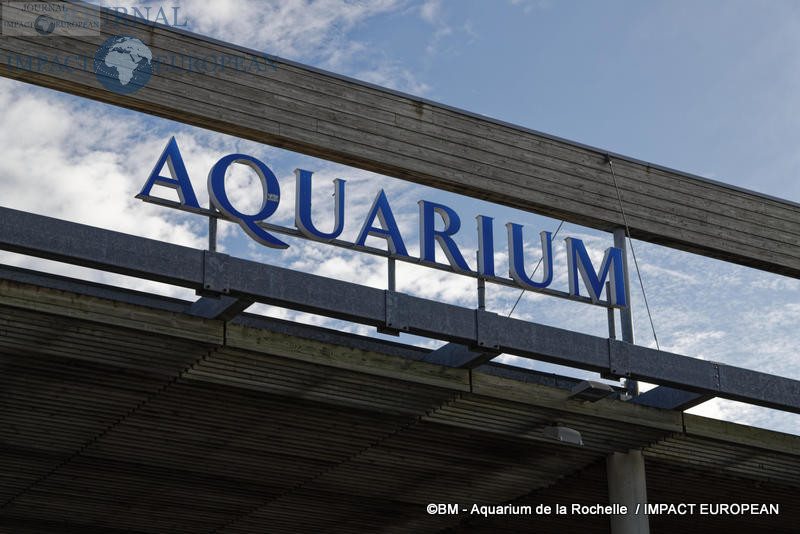 aquarium la rochelle 75