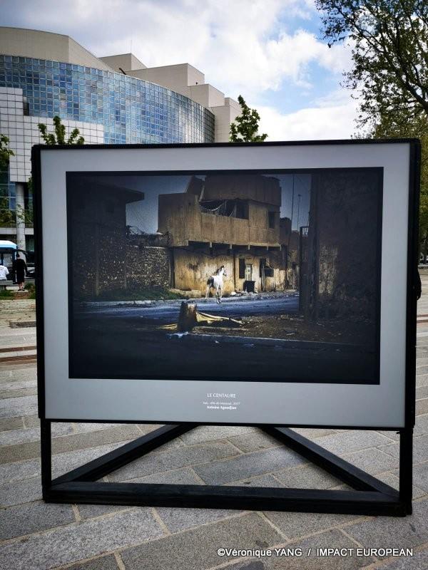 Bastille « Le cri du silence » d'Antoine Agoudjian 11