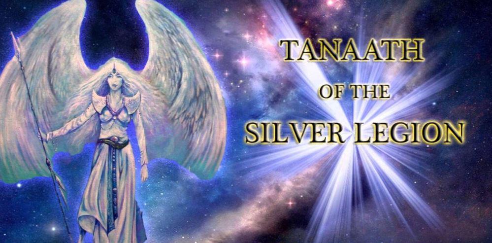 Het zilveren legioen