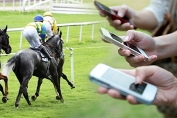 horse racing and betting