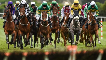 The Best Horse Racing Tipsters For Cheltenham Festival 2020