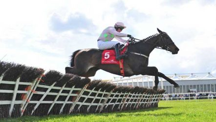 Three contenders for the Champion Hurdle at Cheltenham Festival