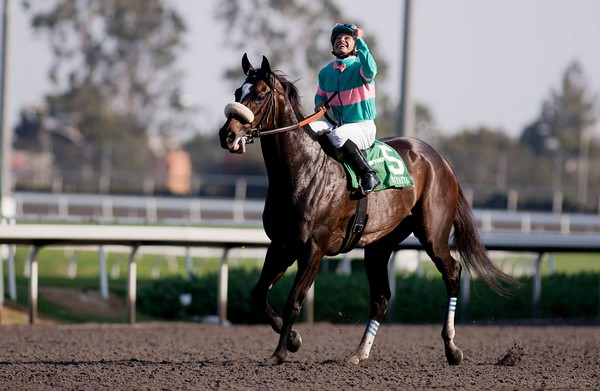 The Three Greatest Racehorses Who Ever Lived