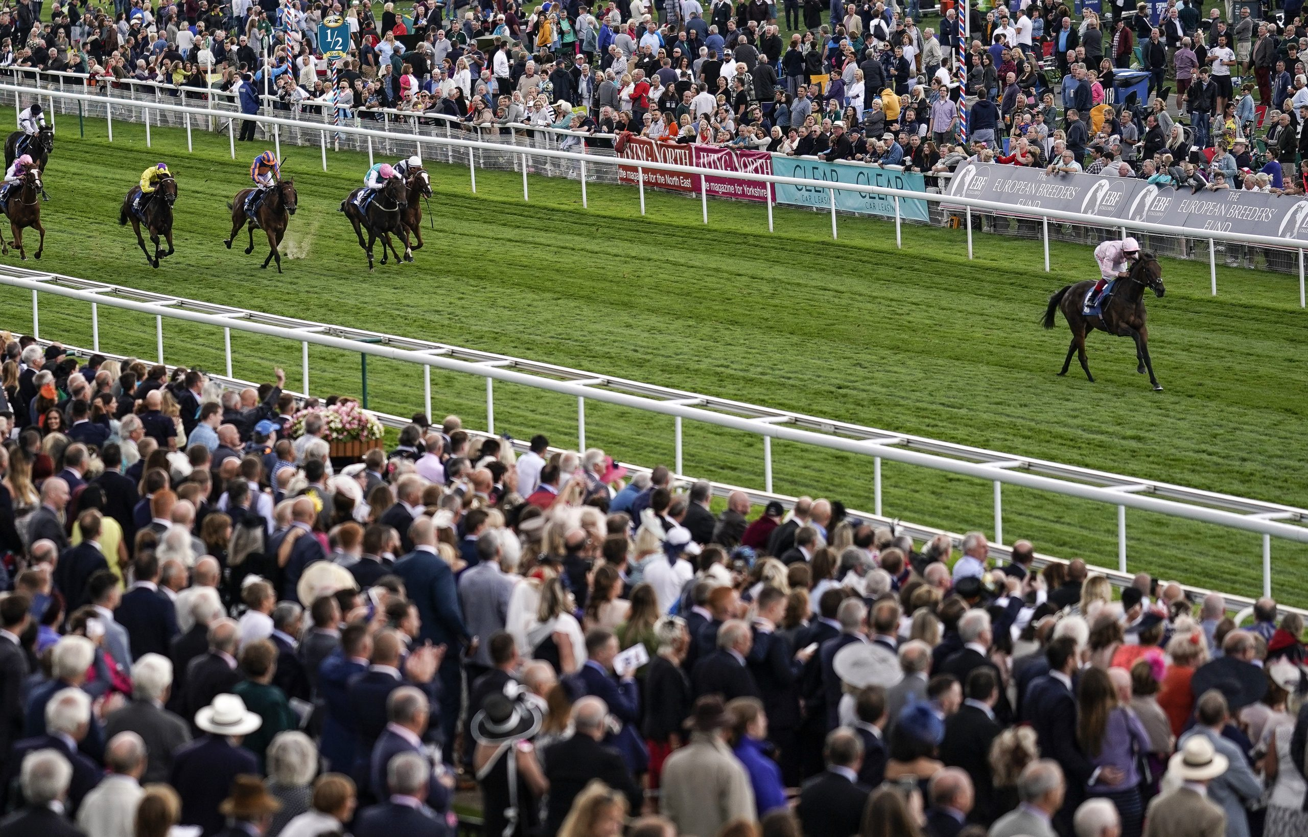 How To Find A Winning Tipster