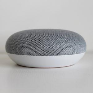 verschil tussen de Google Nest Mini en de Google Home Mini