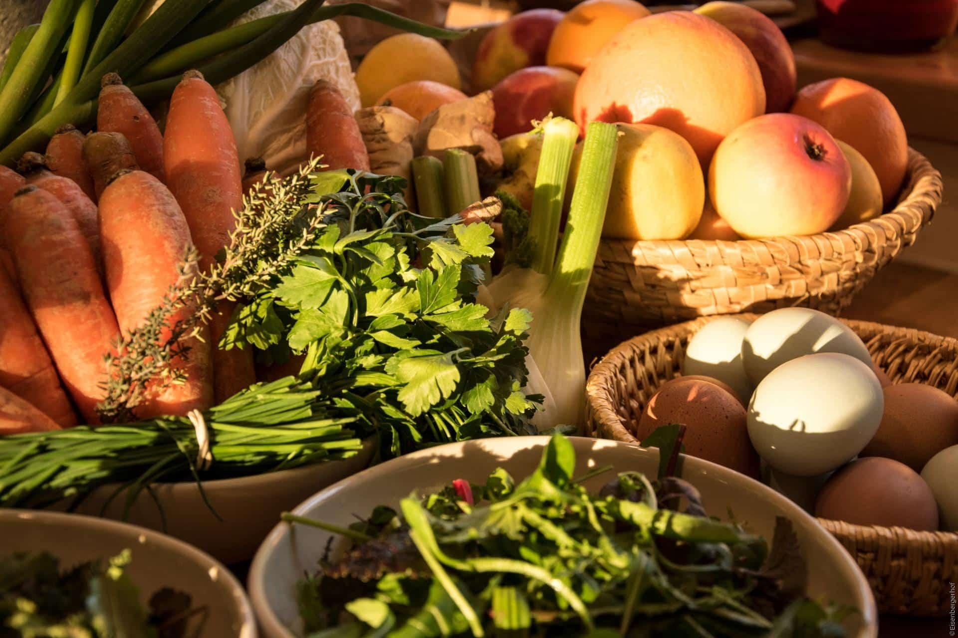 Die Ernährung nach der Traditionellen Europäischen Medizin