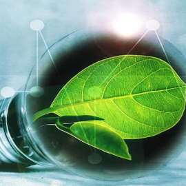 Smart and Sustainable Energy Matchmaking Event