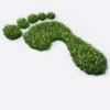 Green Frontrunner
