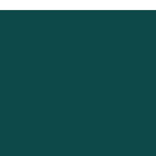 Fantasia Store