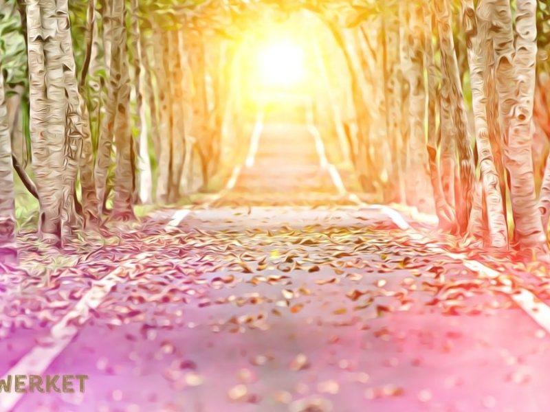 Tolkning | V.38 hösten…
