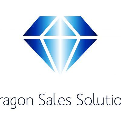 Paragon Sales Solutions 4